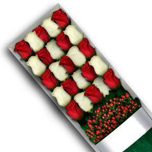 """"""" 24 rosas en caja"""