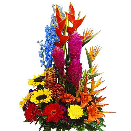 arreglo exotico irania floristeria bogota
