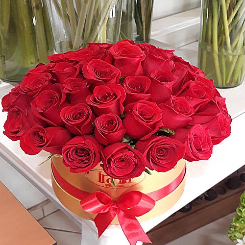 48 rosas cope en caja cilindro, irania floristería