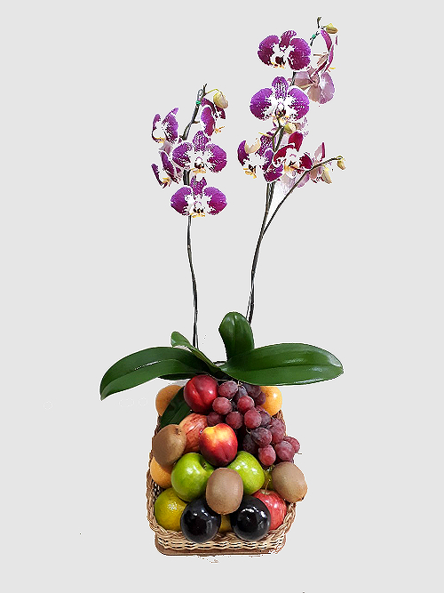 planta orquidea con frutas en canasta, irania floristeria bogota